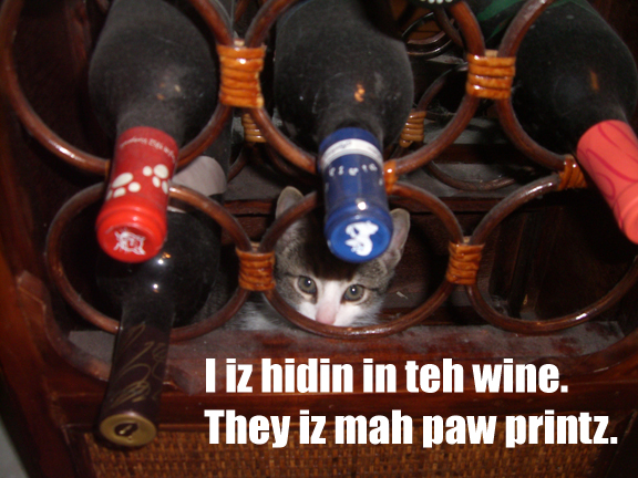lol-cat-in-wine